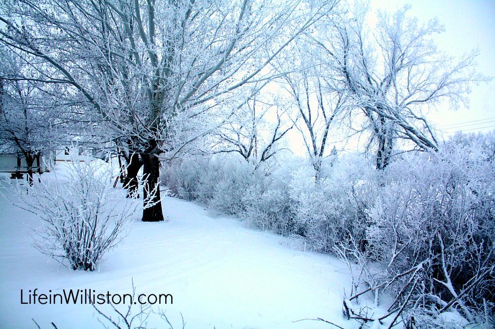winters in north dakota