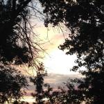 Sunsets in Williston